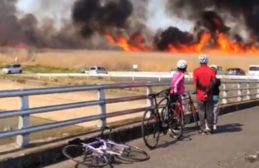 【動画】渡良瀬遊水池の駐車場付近で火事発生 延焼スピードの速さに驚愕