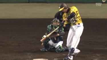 甲子園でホームランを放った、阪神・藤浪投手