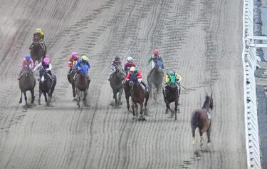 【動画】船橋競馬8Rで落馬、直線でカラ馬が逆走!レースはまさかの確定でファンがブチ切れ