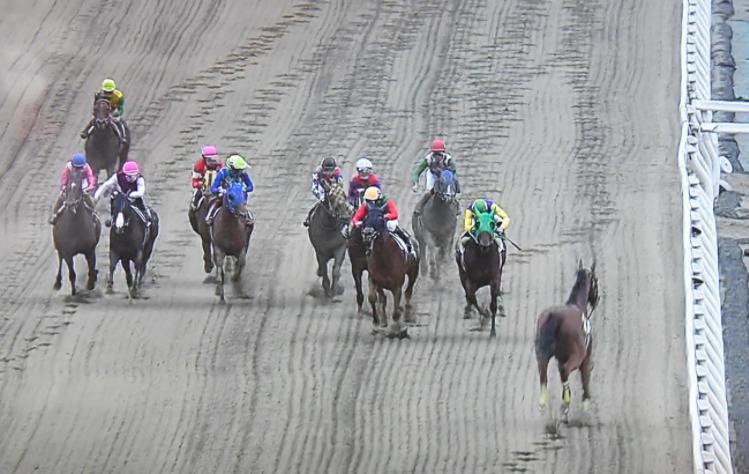 橋競馬8Rで落馬が発生し、直線でカラ馬が逆走